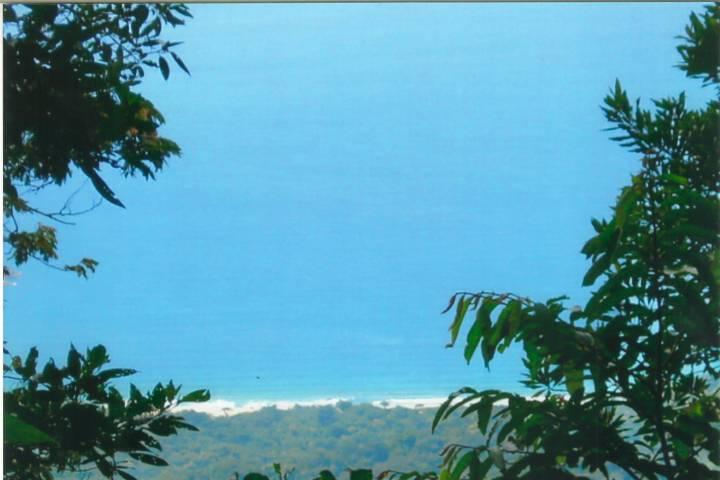 Caminho para a Praia de Castelhanos - Ilhabela SP