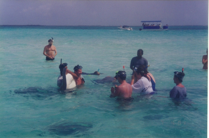 Stingray City - Grand Cayman