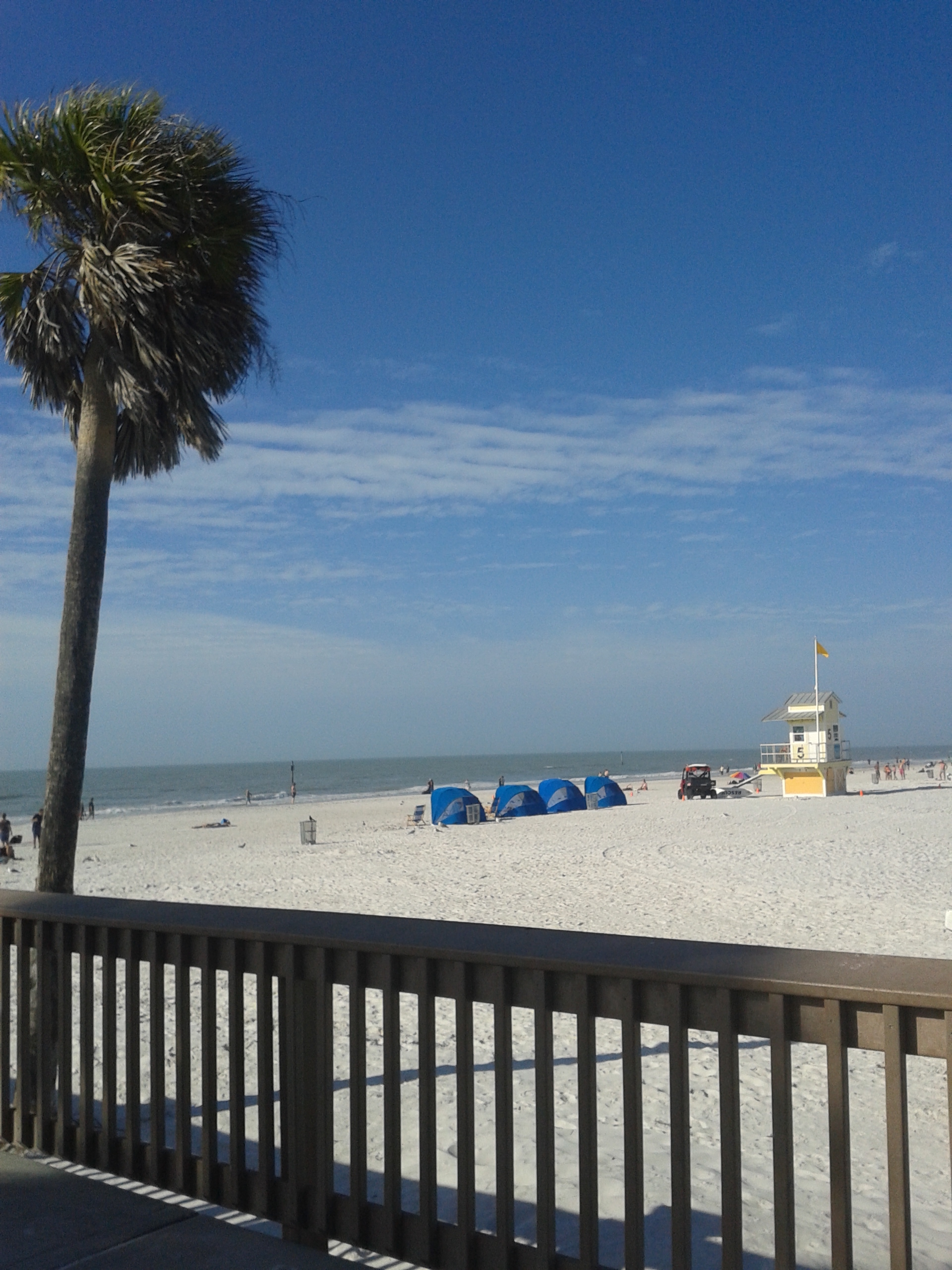 Where is clearwater florida in relation to orlando florida
