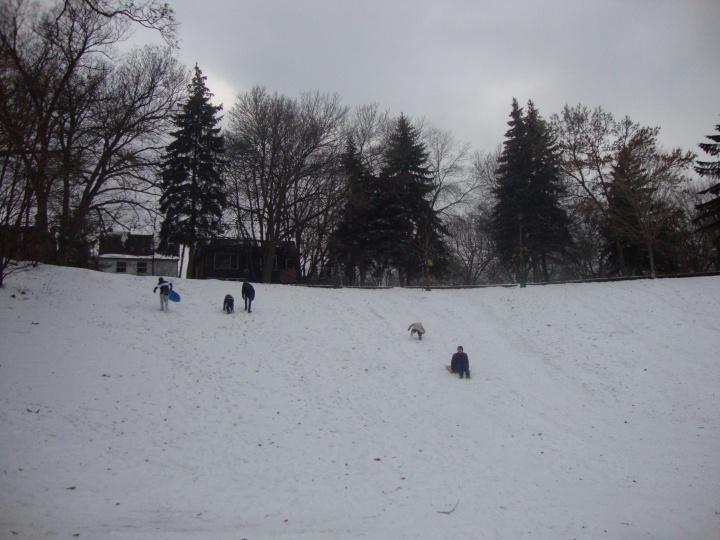 Toboganning - Trinity Bellwoods Park - Toronto - Canadá