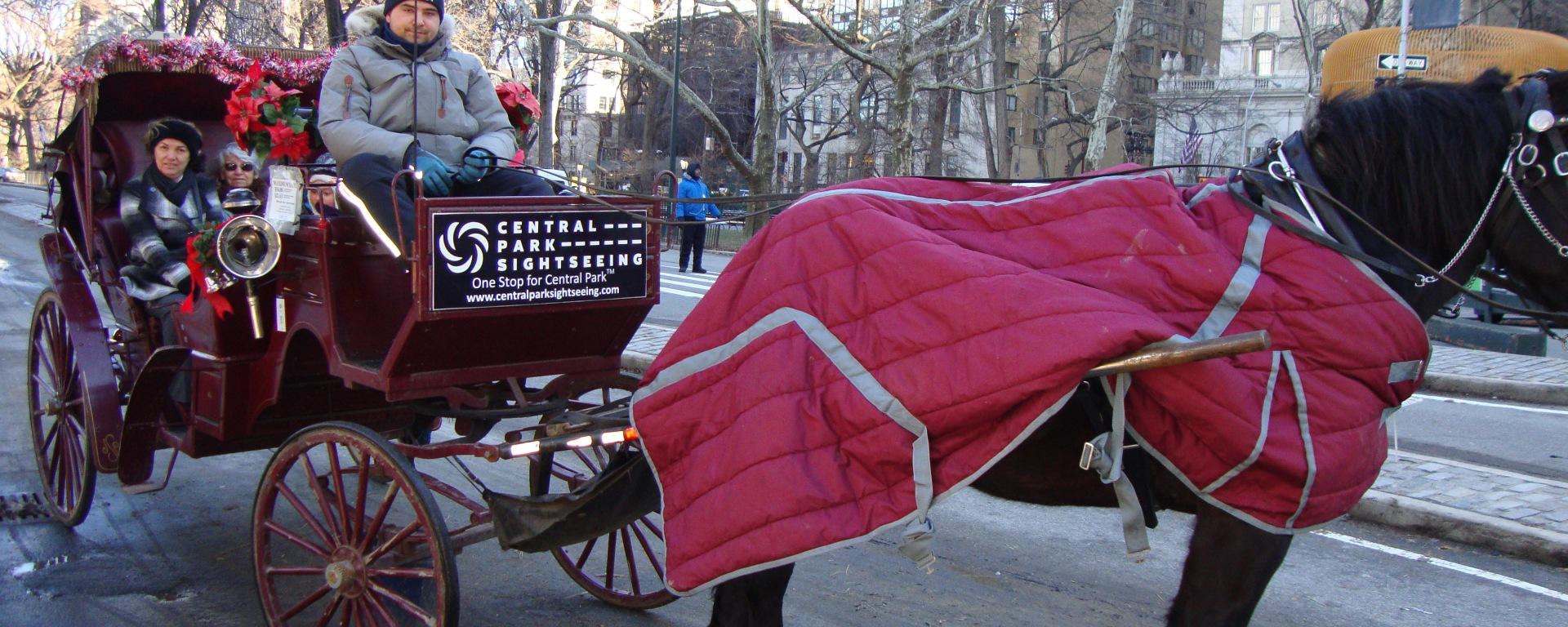 Carruagem no Central Park, Nova Iorque
