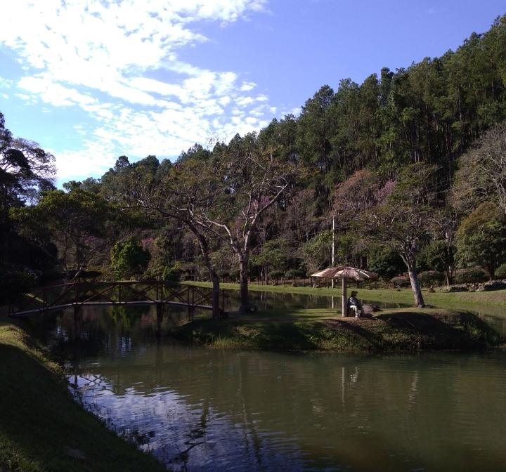 Floresta Nacional de Passa Qyatro MG