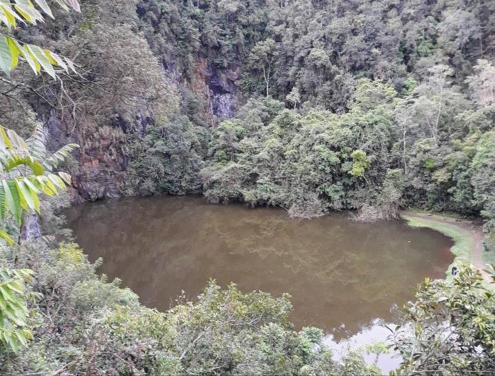 Bosque Zaninelli/Unilivre Curitiba