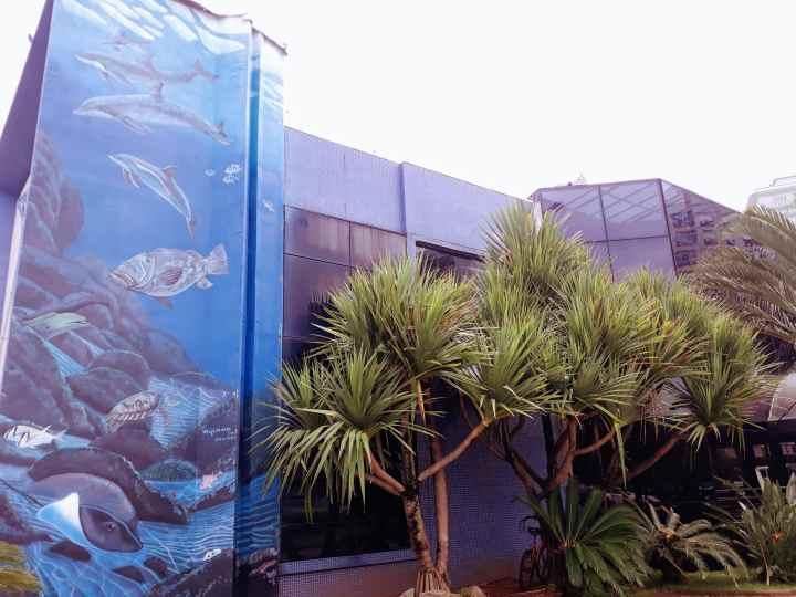 aquariodesantos-min