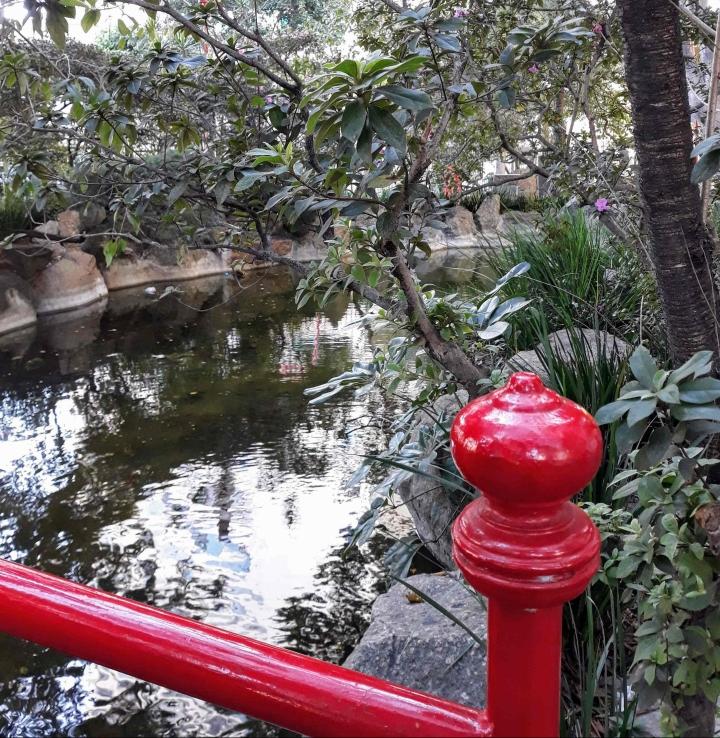 Jardim japonês Largo da Pólvora - Bairro da Liberdade SP