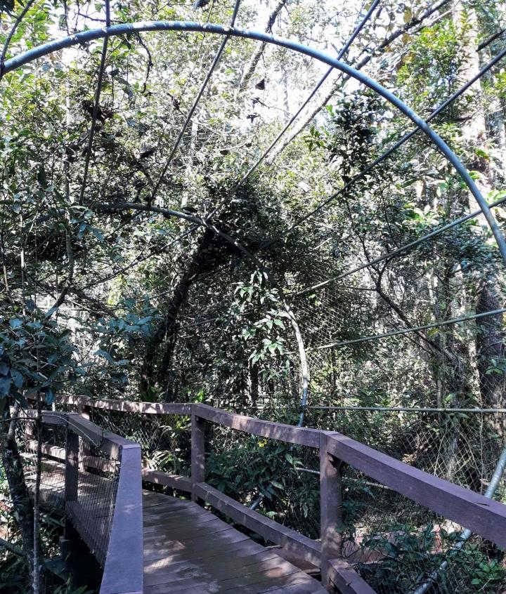 Parque Ecológico Imigrantes